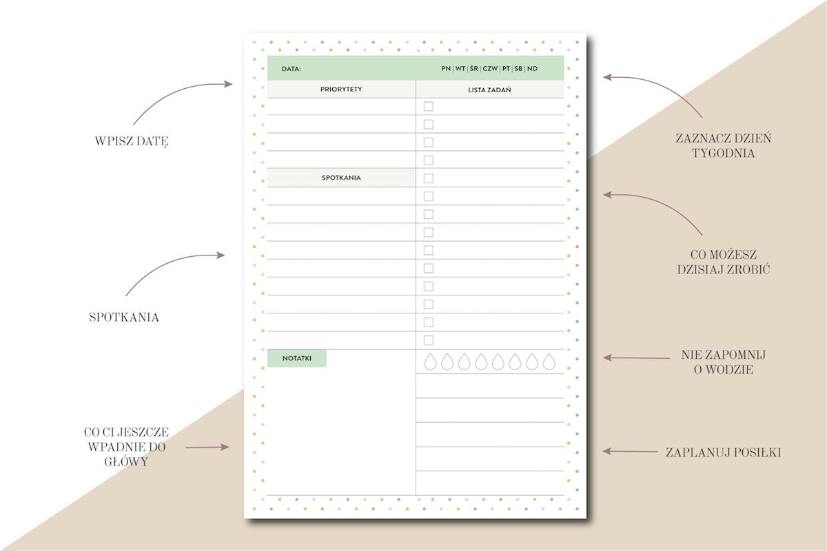 planer dnia priorytety spotkania notatki woda planowanie posiłków