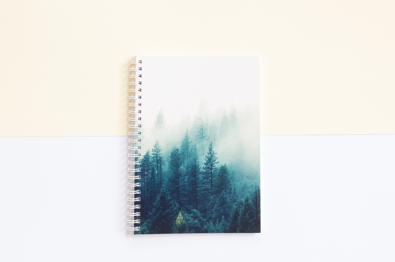 zeszyt na spirali bullet journal las