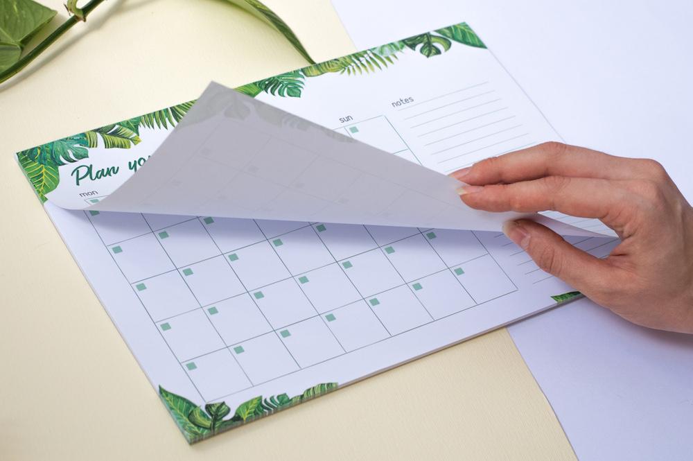 planer miesięczny z odrywanymi kartkami tropiki