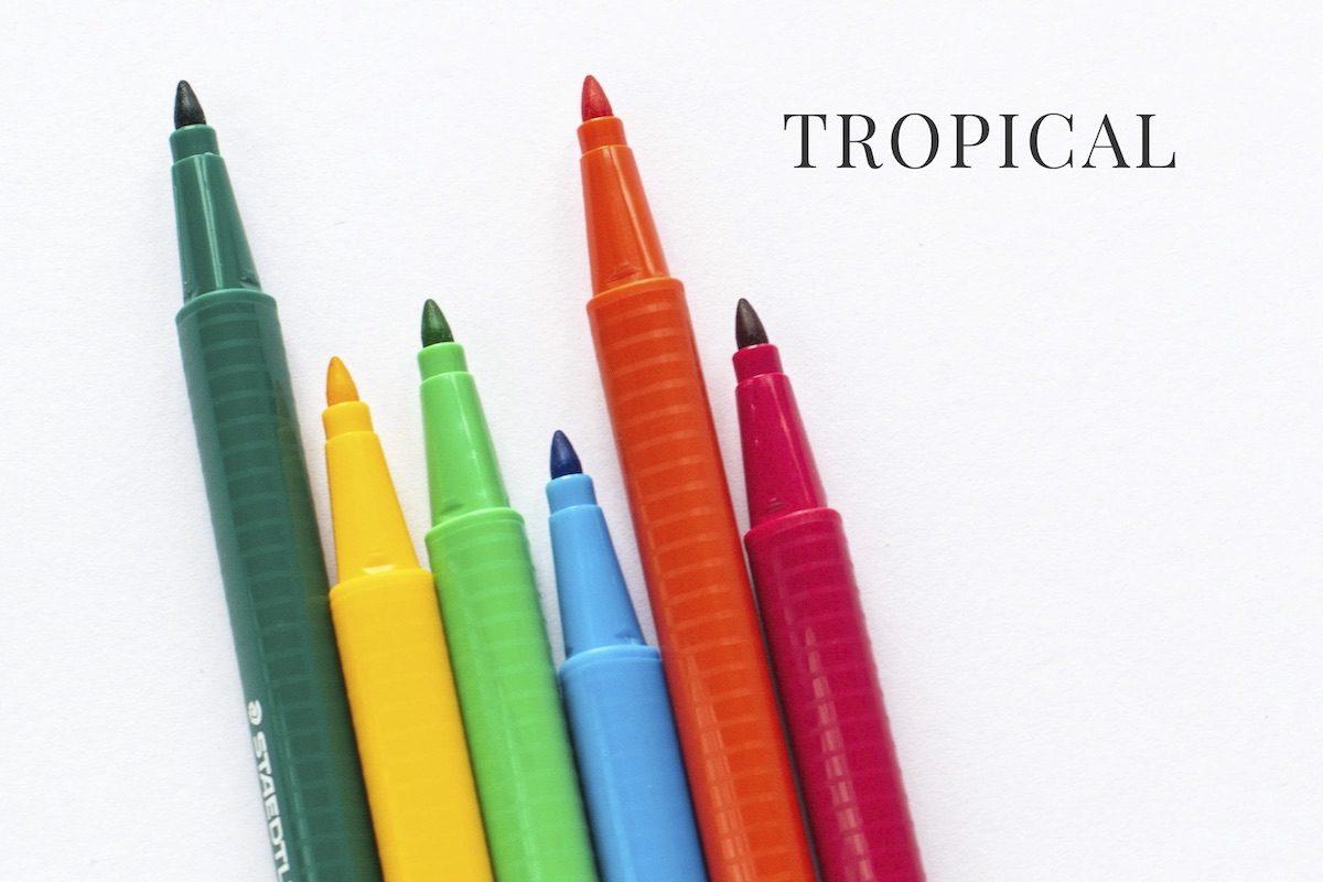 cienkopisy Staedtler Triplus tropical